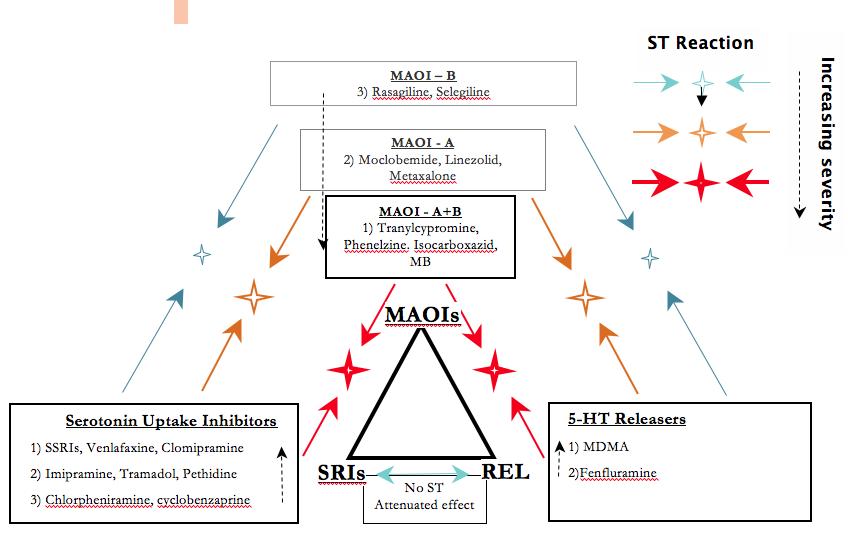 Serotonin Toxicity: Introduction - Psychotropical